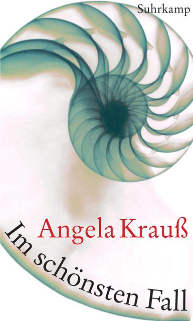 Im schönsten Fall - Angela Krauß