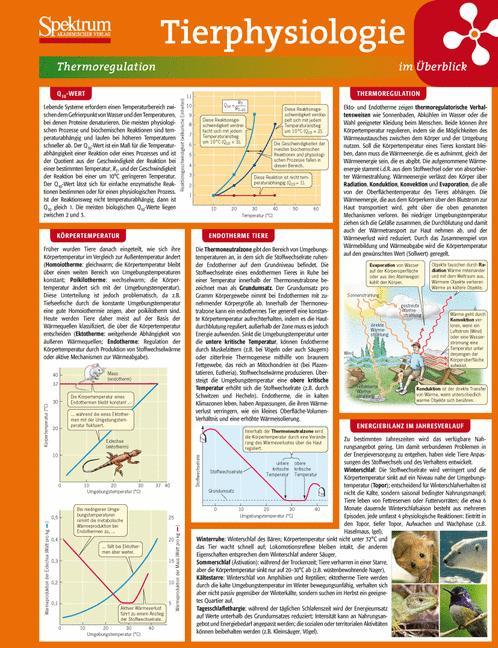 Lerntafel: Tierphysiologie im Überblick (Lernta...