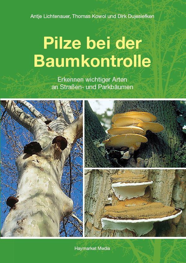 Pilze bei der Baumkontrolle: Erkennen wichtiger Arten an Straßen- und Parkbäumen - Dirk Dujesiefken