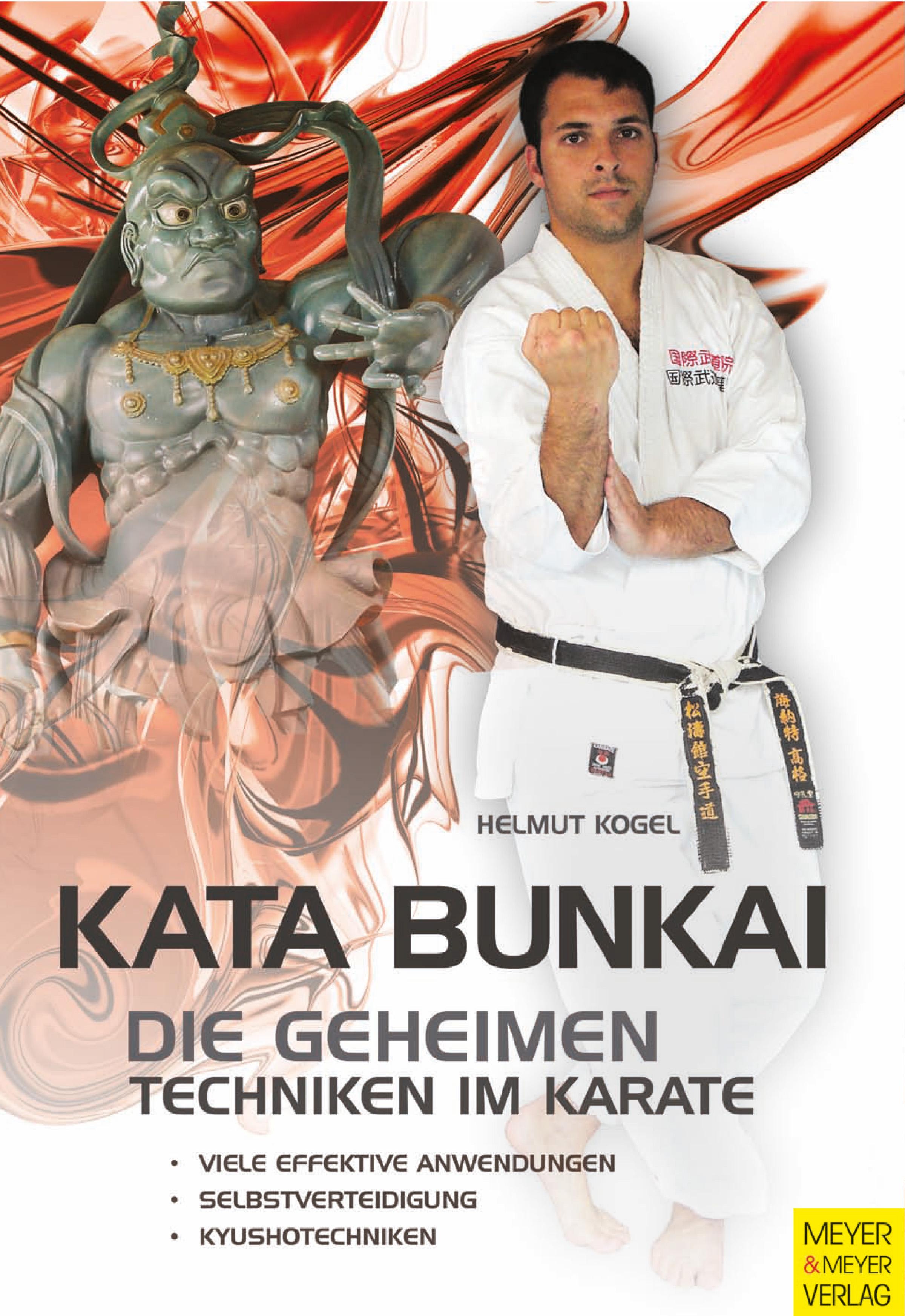 Kata Bunkai: Die geheimen Techniken im Karate -...