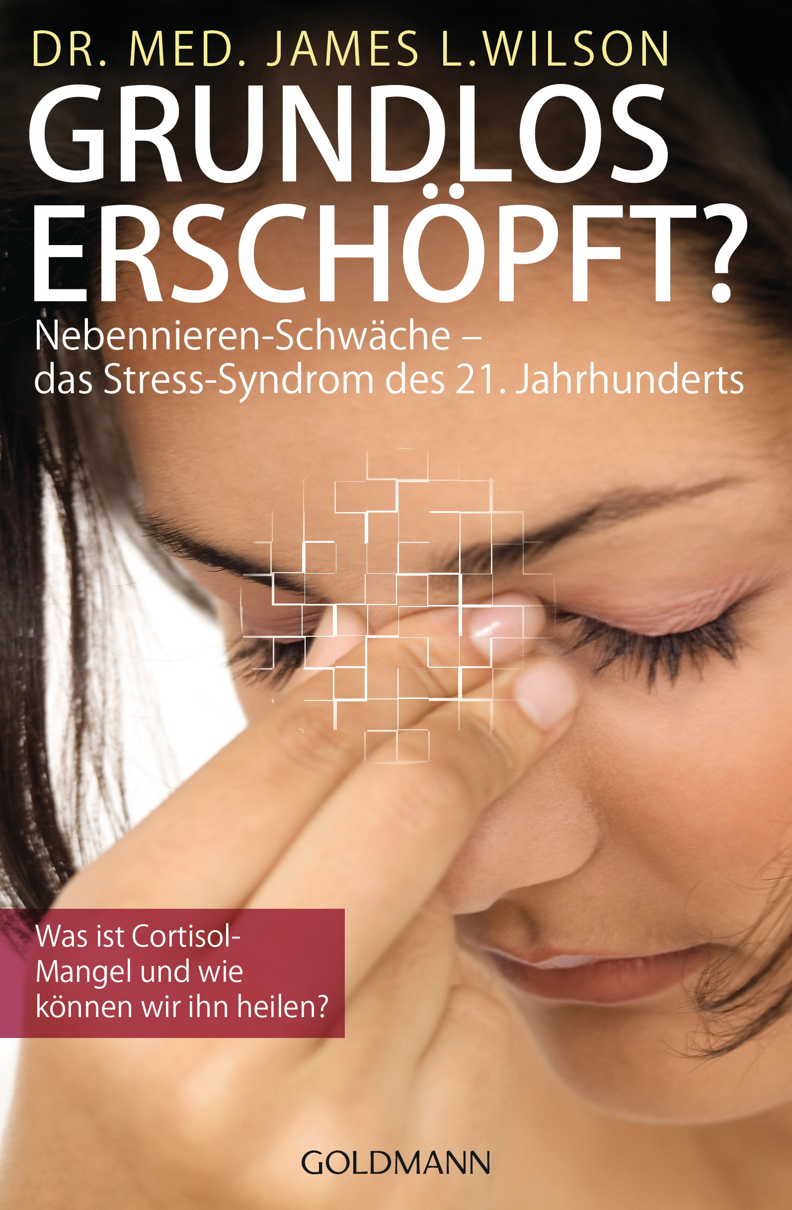 Grundlos erschöpft?: Nebennieren-Insuffizienz - das Stress-Syndrom des 21. Jahrhunderts - James L. Wilson