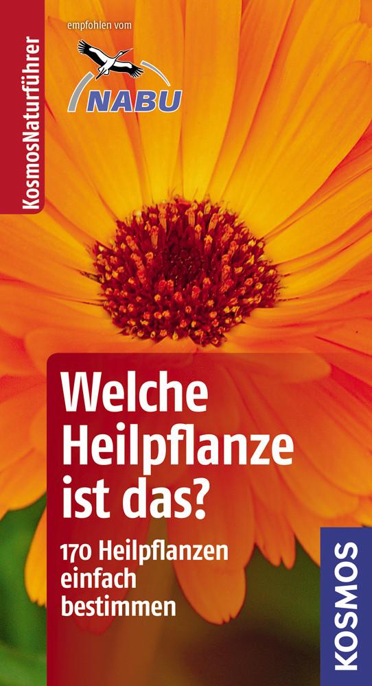 Welche Heilpflanze ist das?: 170 Heilpflanzen einfach bestimmen - typische Merkmale auf einen Blick. Basic - Wolfgang Hensel