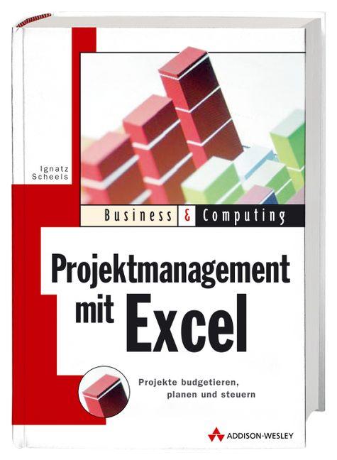 Projektmanagement mit Excel: Projekte budgetier...