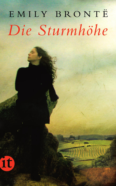 Die Sturmhöhe: Roman (insel taschenbuch) - Emily Brontë