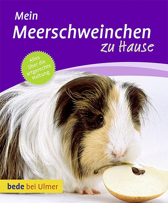 Mein Meerschweinchen zu Hause - Petra Dietz