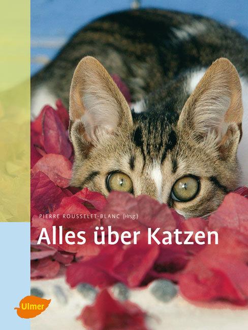 Alles über Katzen