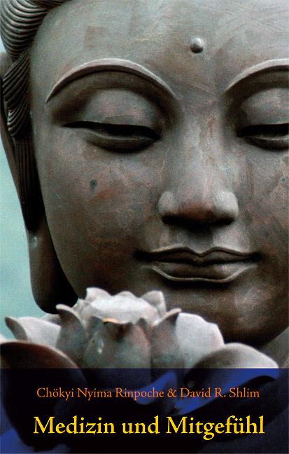 Medizin und Mitgefühl: Anleitung eines tibetisc...