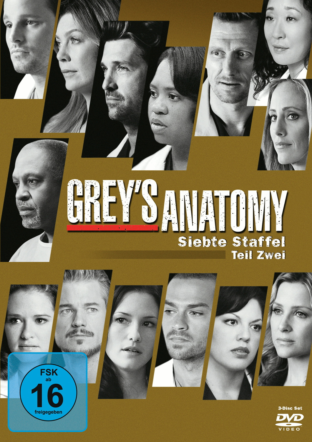 Grey´s Anatomy - Staffel 7 - Teil 2 [3 DVDs]