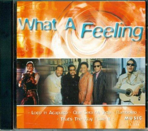 Diverse - What a Feeling (u.a. mit Irene Cara, Lobo, Tone Loc, ...)
