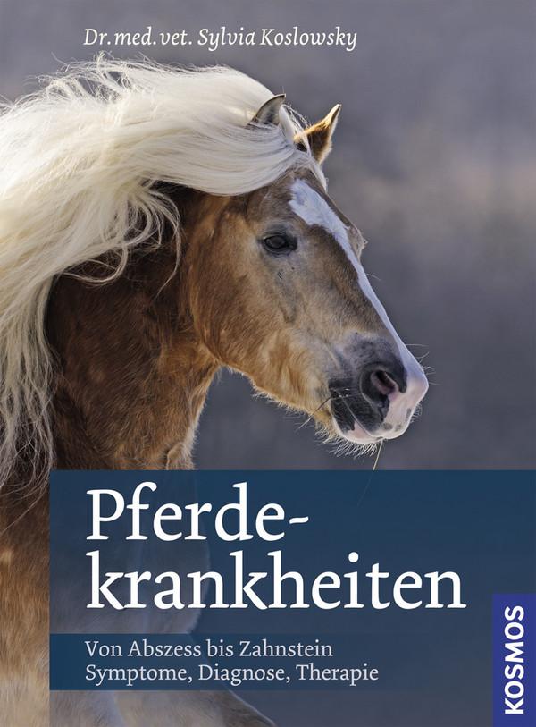 Pferdekrankheiten: Von Abszess bis Zahnstein. Symptome, Diagnose, Therapie - Sylvia Koslowsky