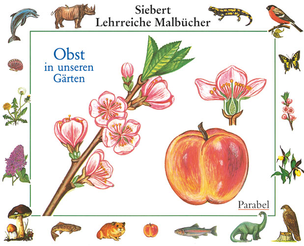 Obst in unseren Gärten - Erwin Eigner