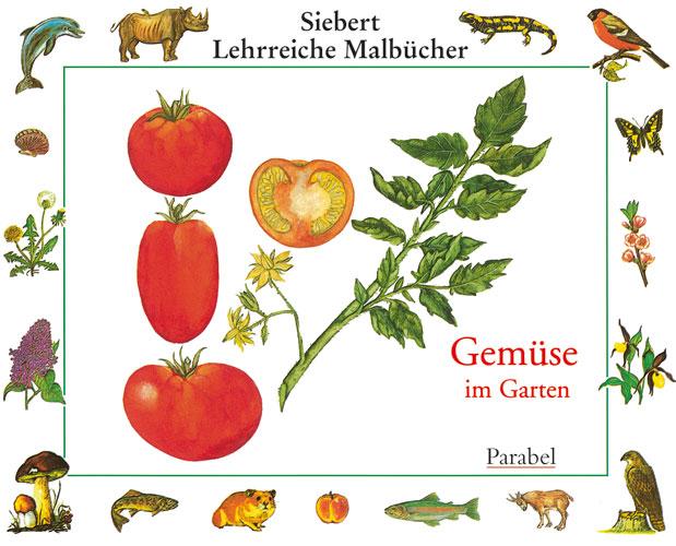 Gemüse im Garten - Erwin Eigner
