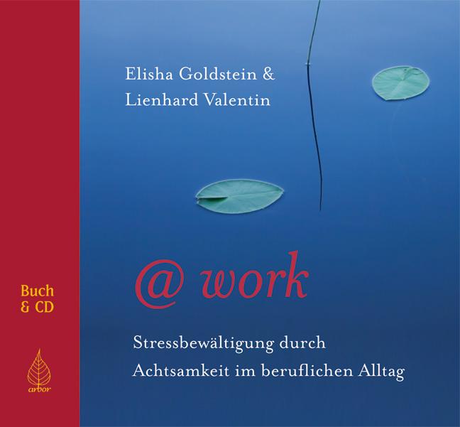 @work: Stressbewältigung durch Achtsamkeit im beruflichen Alltag - Elisha Goldstein