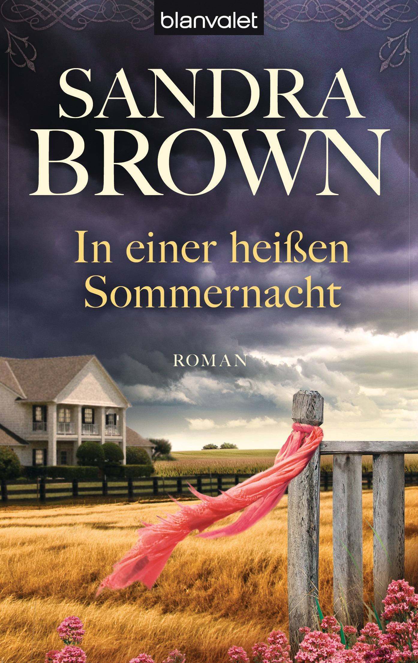 In einer heißen Sommernacht - Sandra Brown