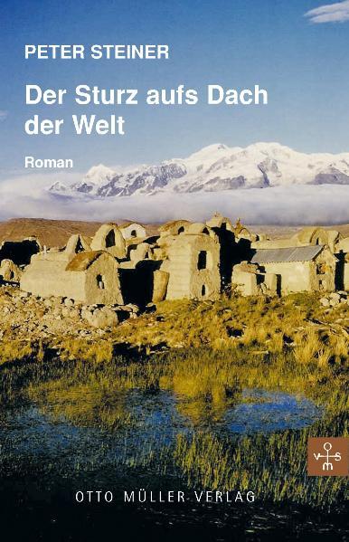Der Sturz aufs Dach der Welt: Roman - Peter Steiner