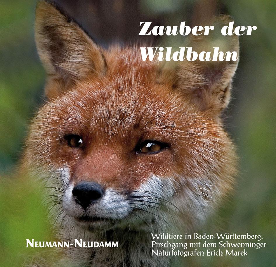 Zauber der Wildbahn: Wildtiere in Baden-Württem...