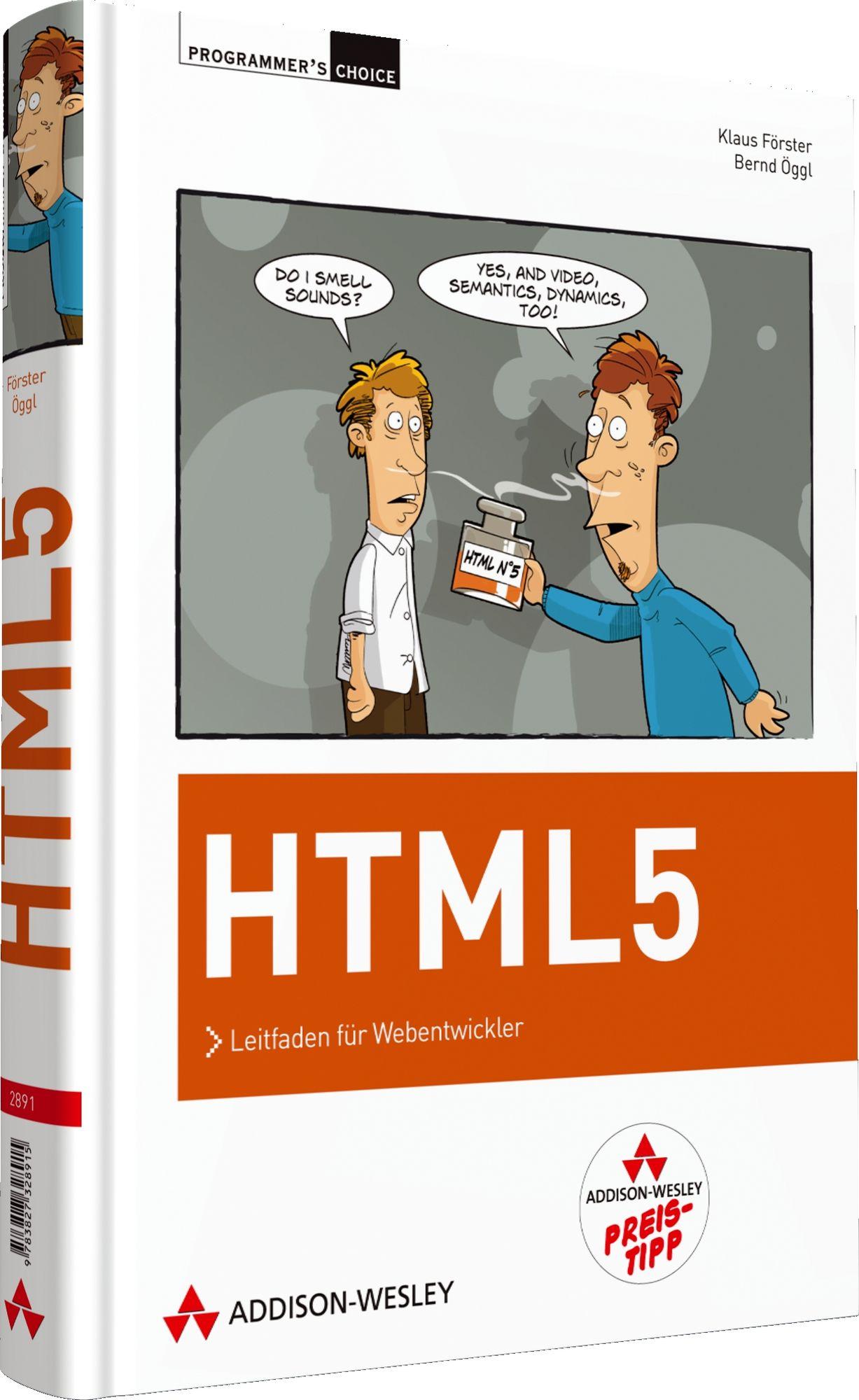 HTML 5: Leitfaden für Webentwickler (Programmer...