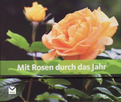 Mit Rosen durch das Jahr