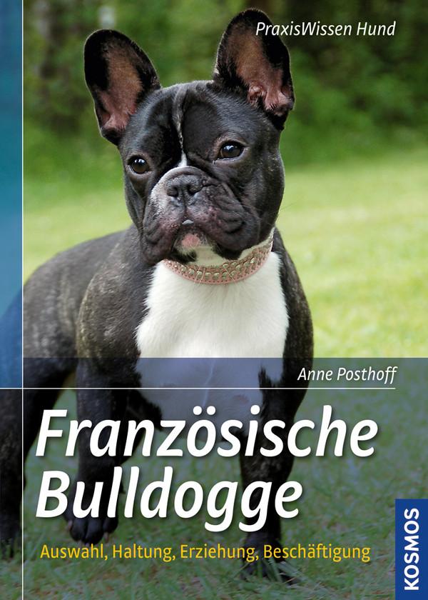 Französische Bulldogge: Auswahl, Haltung, Erziehung, Beschäftigung - Anne Posthoff
