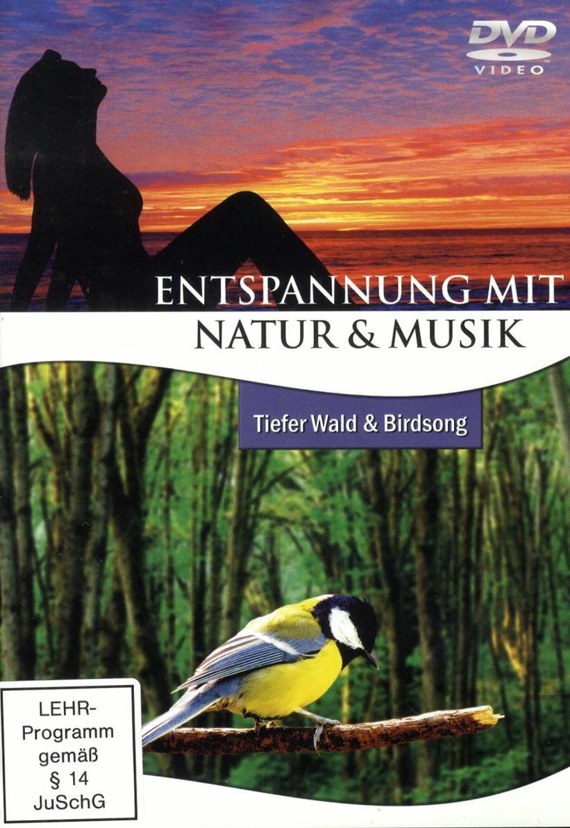 Entspannung mit Natur & Musik: Tiefer Wald & Bi...