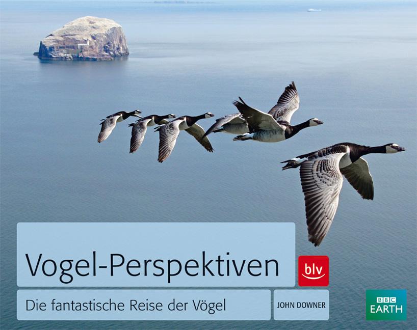 Vogel-Perspektiven: Die fantastische Reise der ...
