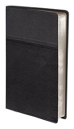 Thinline Bible-NIV [Hardcover]
