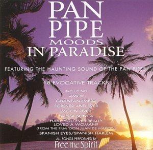 Free the Spirit - Pan Pipe Moods in..