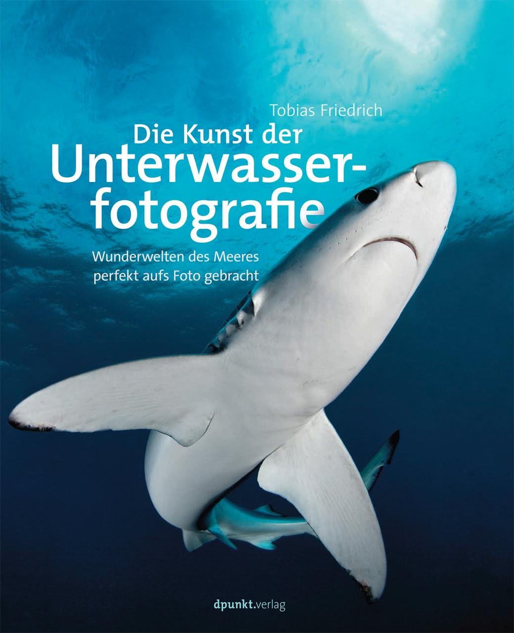 Die hohe Kunst der Unterwasserfotografie: Wunderwelten des Meeres perfekt aufs Foto gebracht - Tobias Friedrich