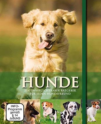 Hunde - Buch & DVD - Parragon
