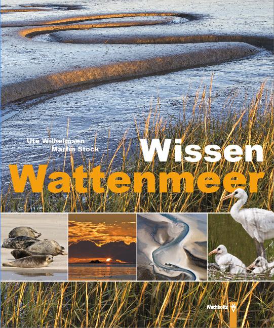 Wissen Wattenmeer - Wilhelmsen, Ute