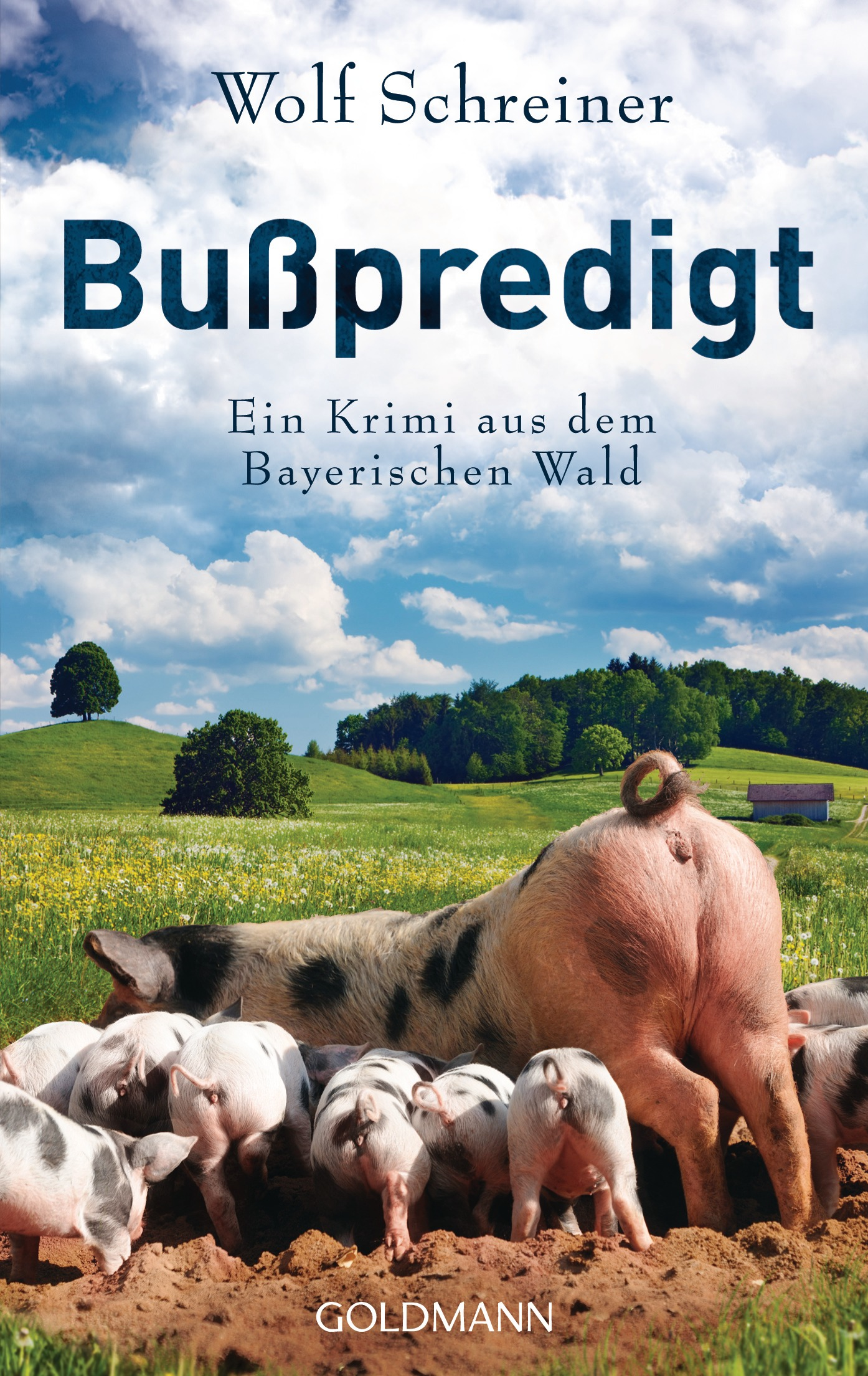 Bußpredigt: Ein Krimi aus dem Bayerischen Wald ...