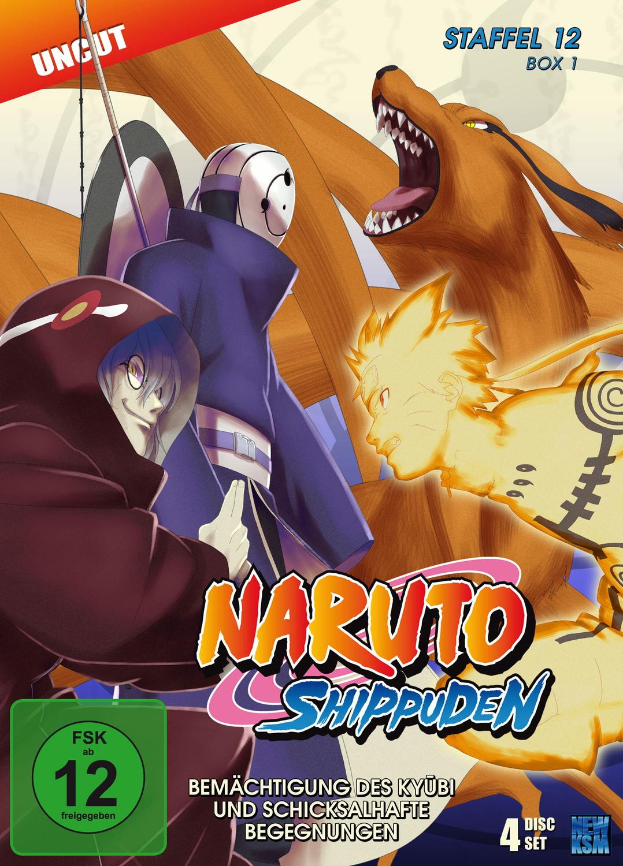 Naruto Shippuden - Staffel 12 - Box 1: Bemächtigung des Kyubi und schicksalhafte Begegnungen (Episoden 463-487, Uncut) [