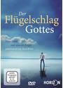Der Flügelschlag Gottes - Interview mit einem Engel - Thomas Reichelt, Thomas