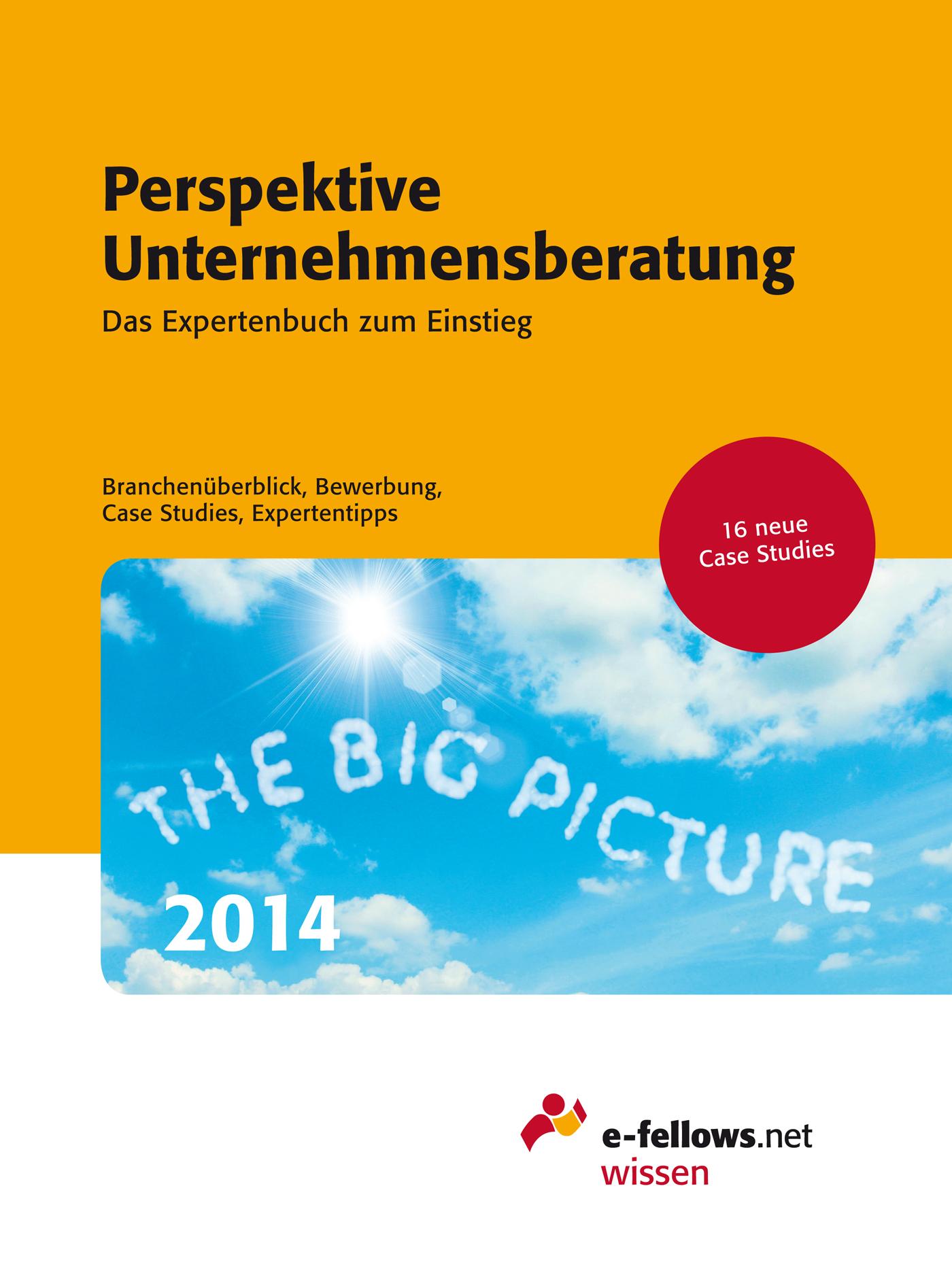 Perspektive Unternehmensberatung 2014: Das Expe...