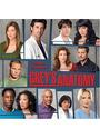 Grey's Anatomy: 2008 Calendar