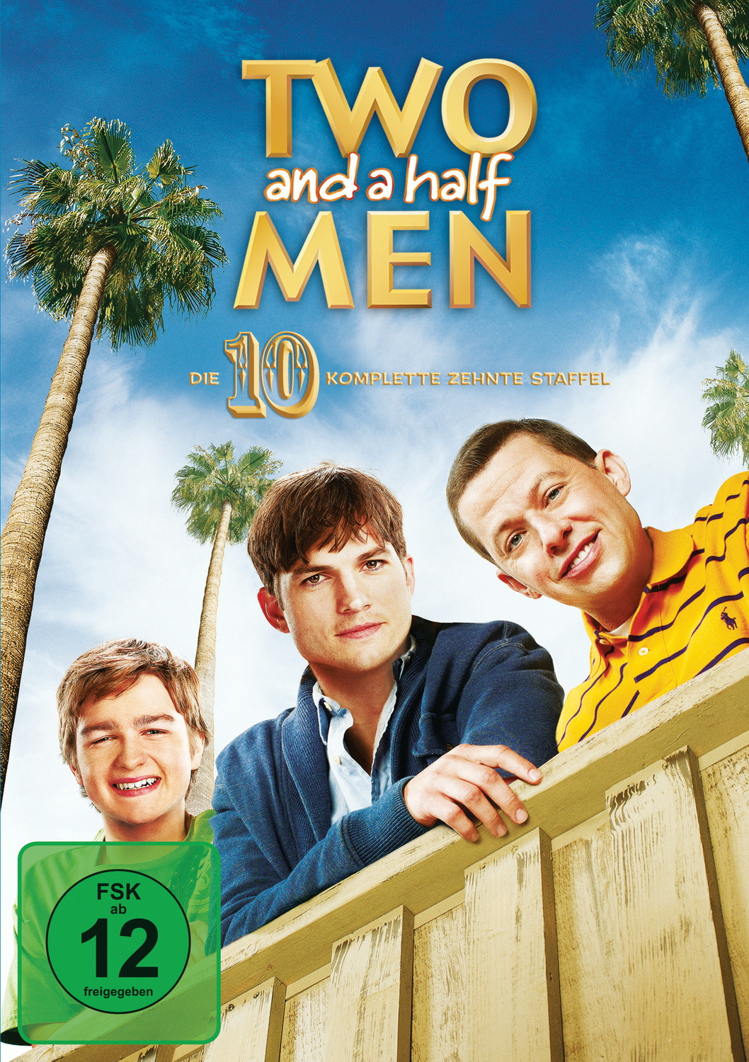 Two and a Half Men - Staffel 10 [3 DVDs]