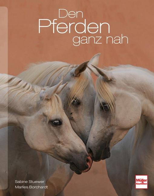 Den Pferden ganz nah - Stuewer, Sabine
