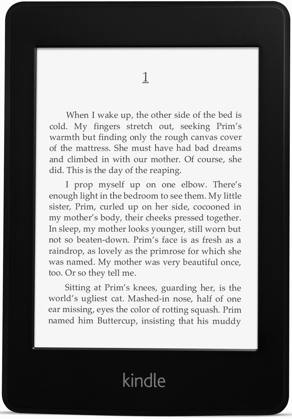 Amazon Kindle Paperwhite 6 2GB [Wi-Fi + 3G, 2. Generation] schwarz
