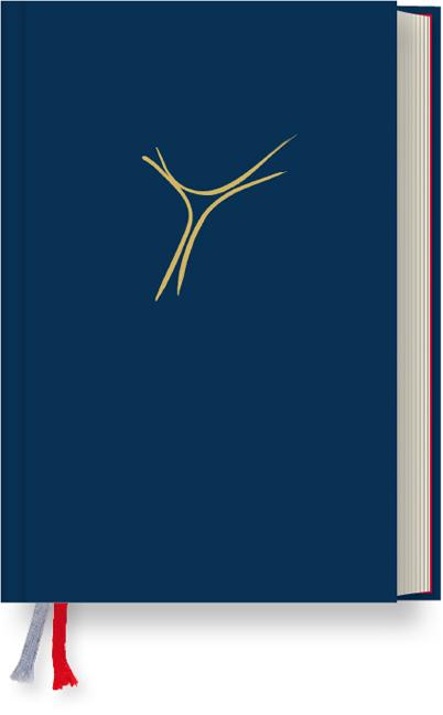 Gotteslob Bistum Passau- Standardausgabe Balacron dunkelgrau: Katholisches Gebet- und Gesangbuch. Neues Gotteslob für da