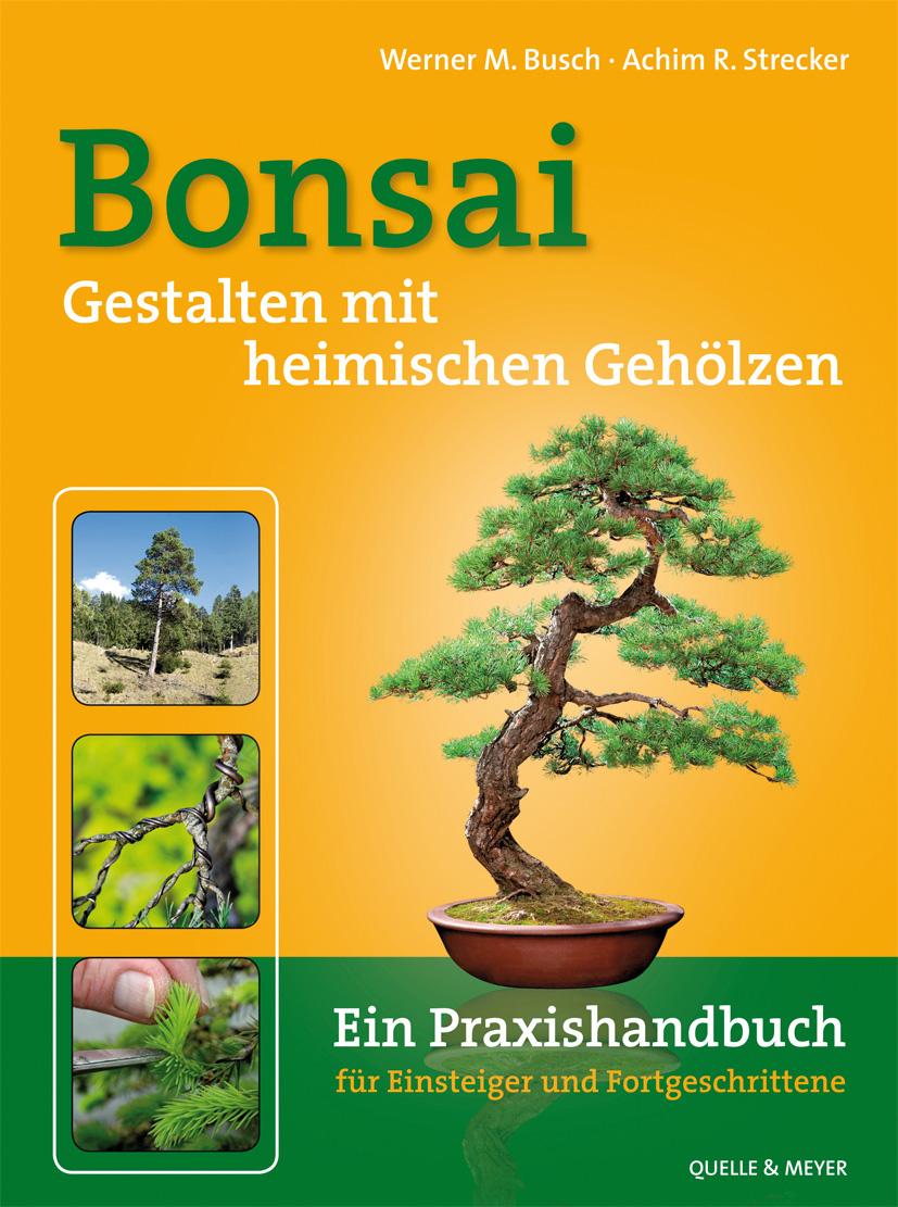 Bonsai aus heimischen Gehölzen: Ein Praxishandbuch für Anfänger und Fortgeschrittene - Werner B. Busch, Achim R. Strecke