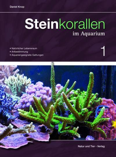 Steinkorallen im Aquarium 01 - Knop, Daniel