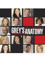 Grey's Anatomy: 2011 Calendar
