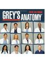 Grey's Anatomy: 2010 Calendar