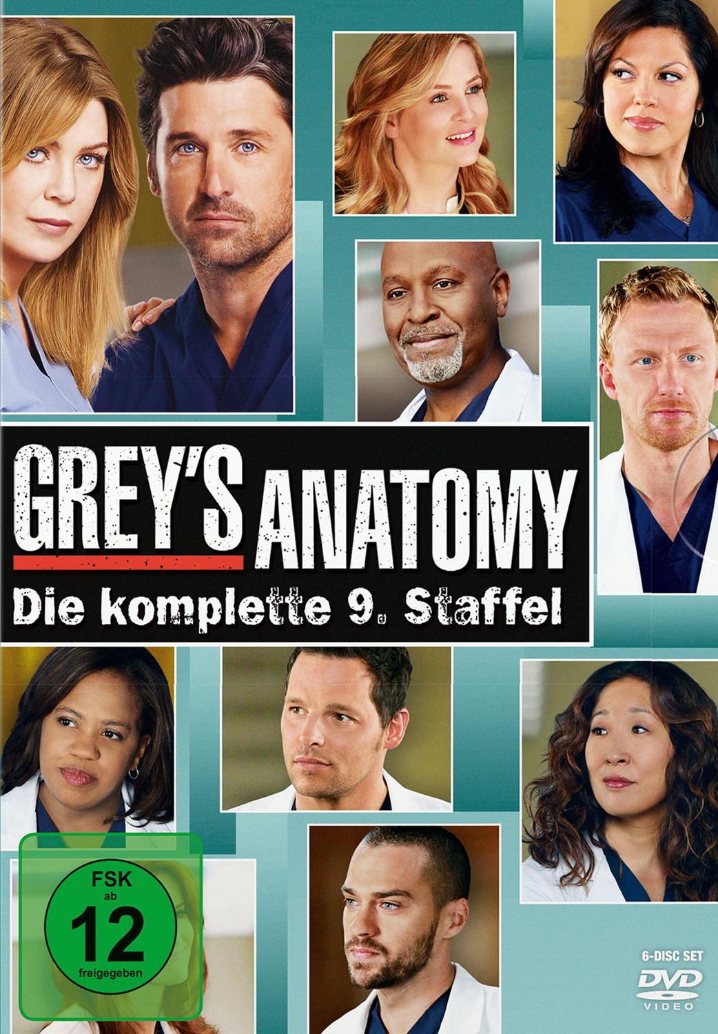 Grey´s Anatomy - Staffel 9 [6 DVDs]