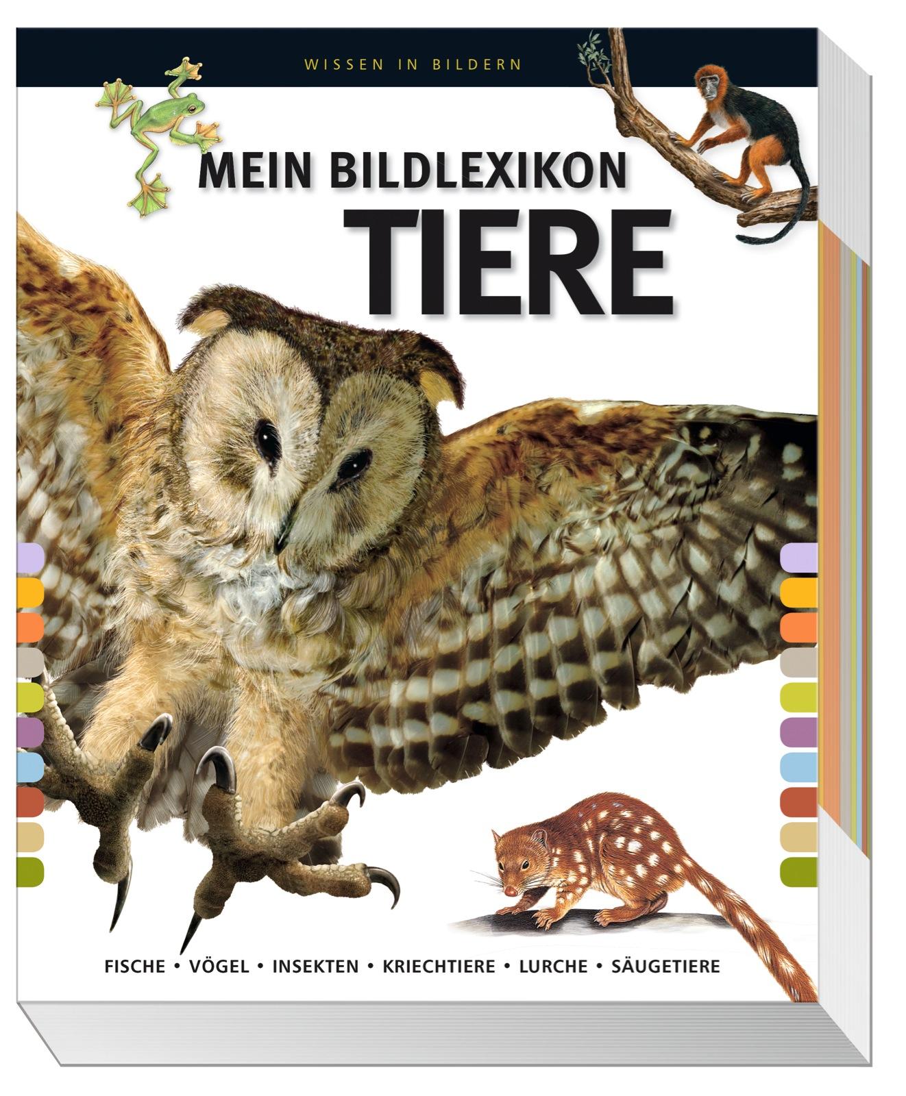 Mein großes Bildlexikon Tiere: Fische, Vögel, I...