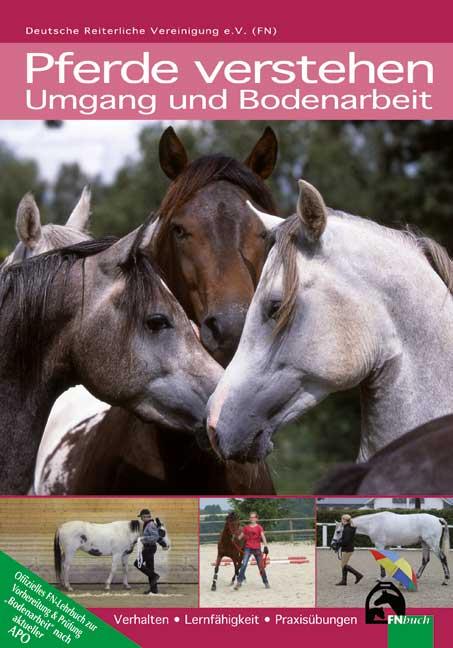 Pferde verstehen - Umgang und Bodenarbeit: Verhalten - Lernfähigkeit - Praxisübungen - Deutsche Reiterliche Vereinigung