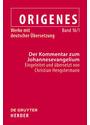 Origenes - Werke mit deutscher Übersetzung - Band 16/1: Der Kommentar zum Johannesevangelium - Christian Hengstermann