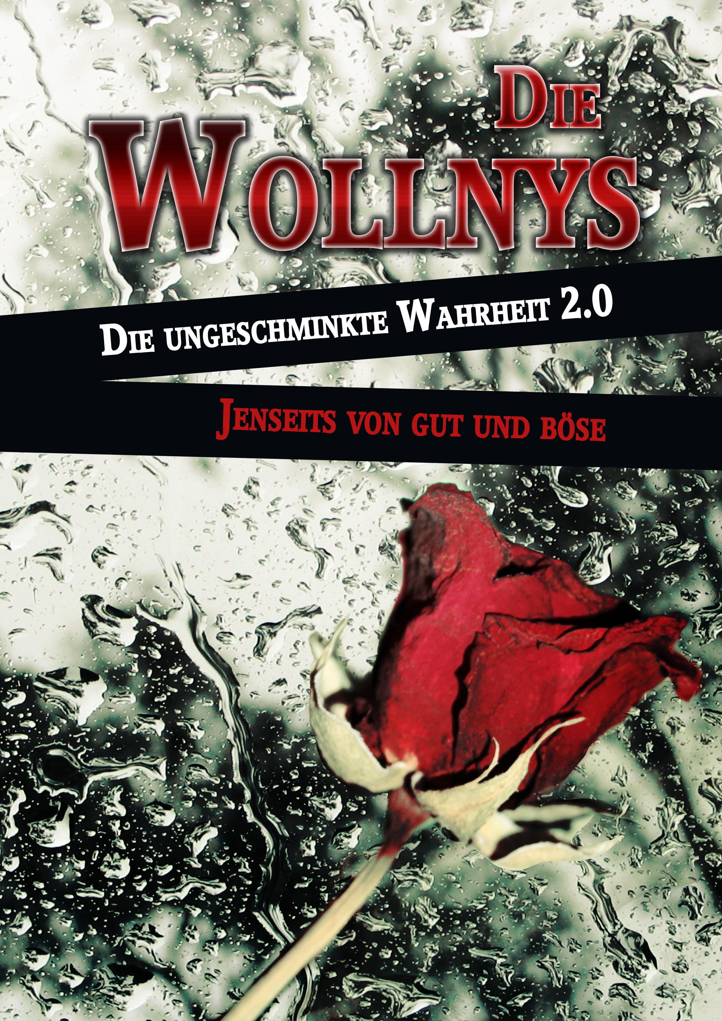 Die Wollnys - Die ungeschminkte Wahrheit 2.0: Jenseits von gut und böse - Katja Schneidt, Dieter Wollny