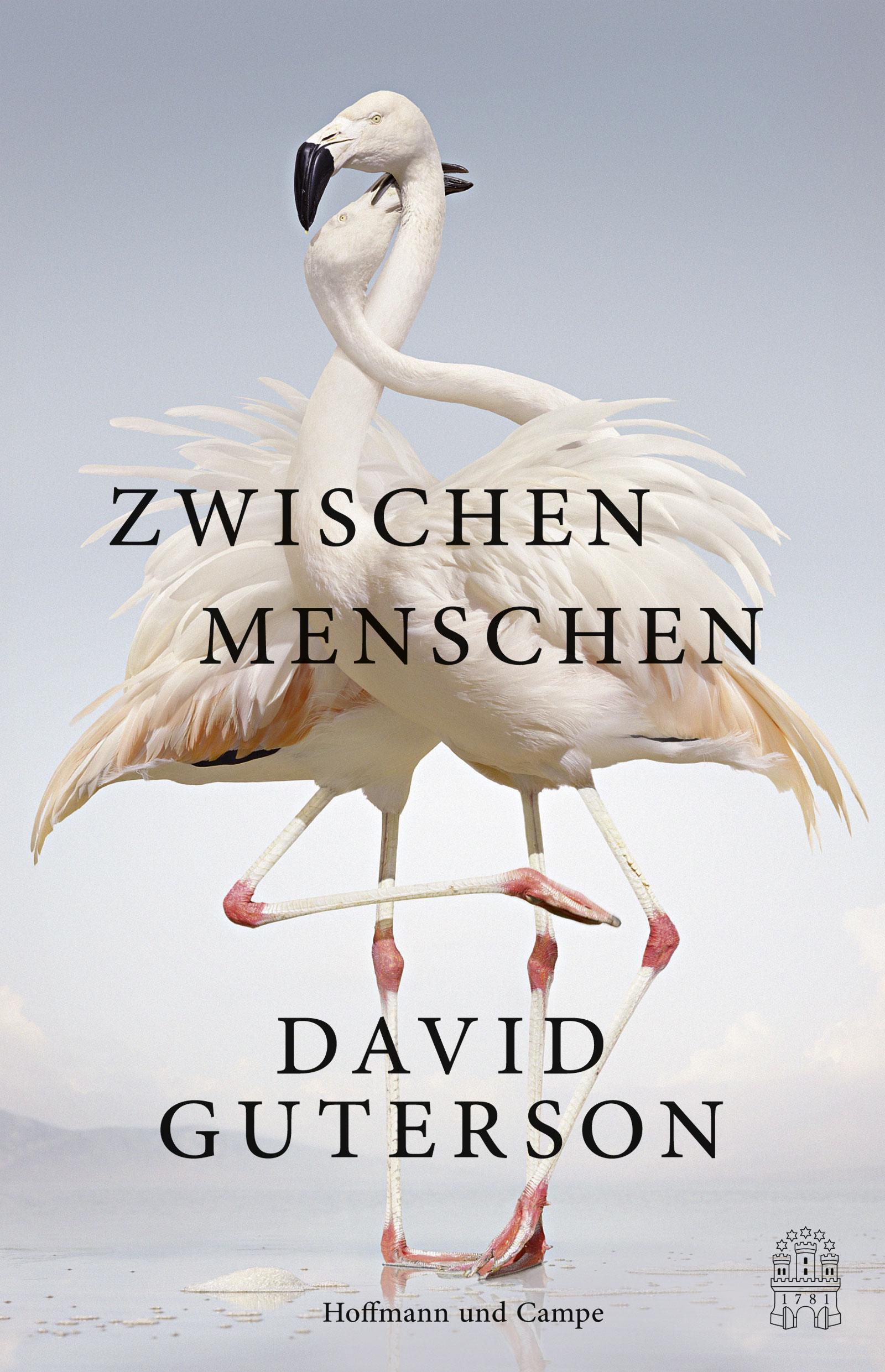 Zwischen Menschen: Erzählungen - David Guterson