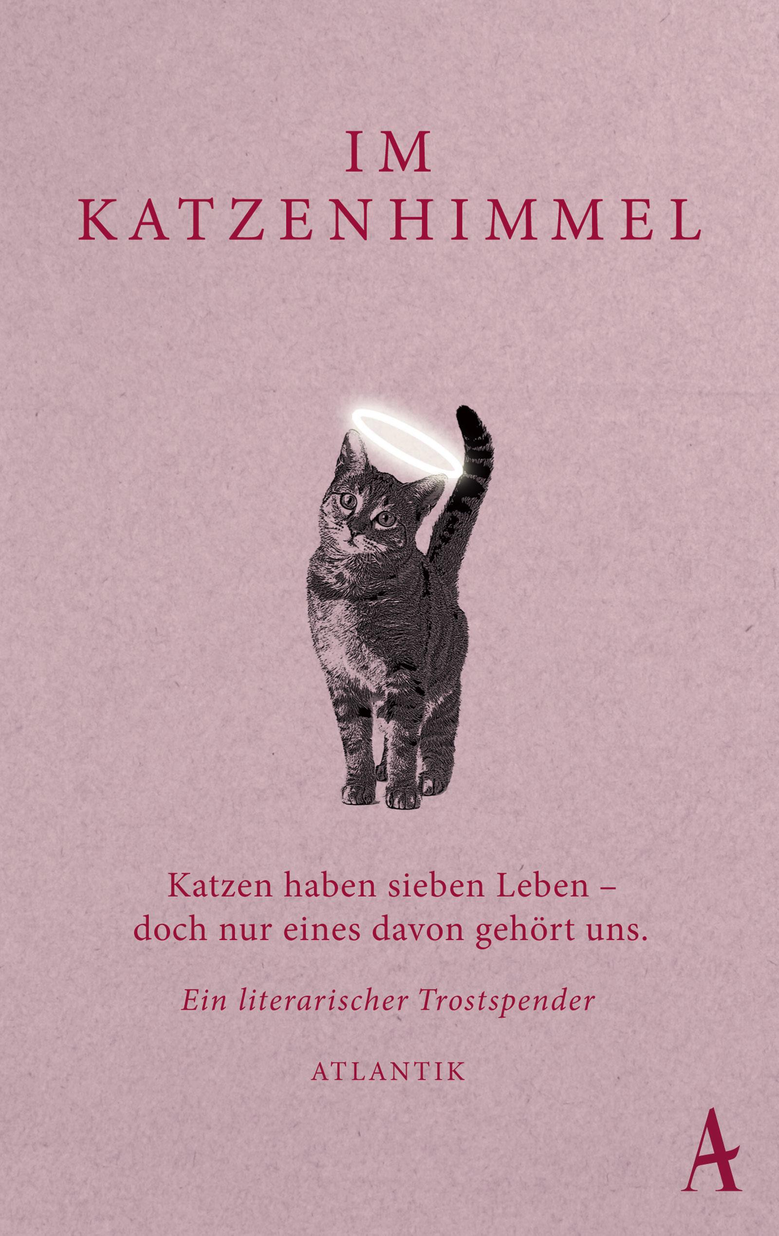 Im Katzenhimmel: Katzen haben sieben Leben - doch nur eines davon gehört uns - Ein literarischer Trostspender